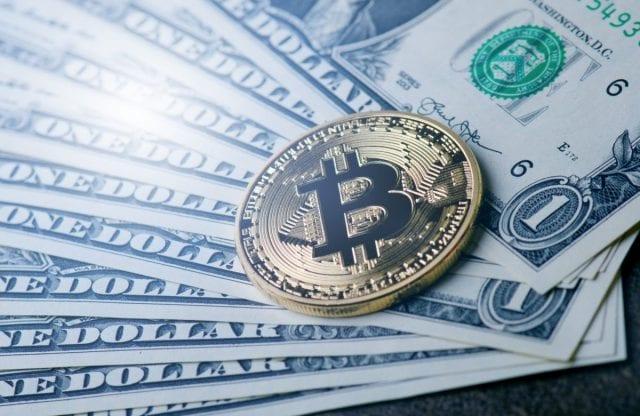 Bitcoin cash news reddit